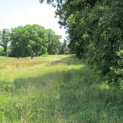 Norris City IL Residential Lots & Land For Sale: $27,500