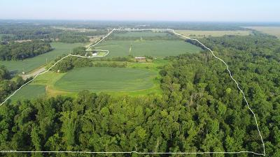 Johnston City Residential Lots & Land For Sale: 10716 Herrin Road