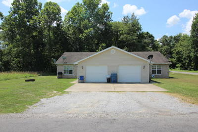 Carterville Multi Family Home For Sale: 2889 Dr Springs Road