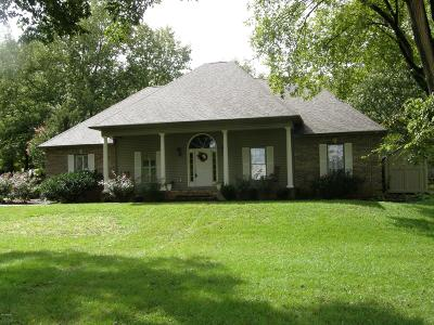 Creal Springs, Goreville, Marion Single Family Home For Sale: 10471 Chayla Road