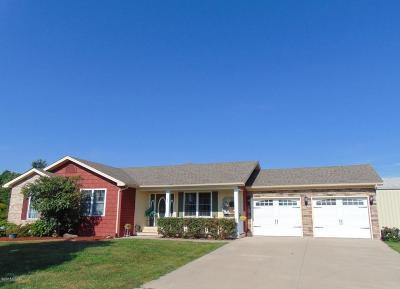 Murphysboro Single Family Home For Sale: 90 Alex Lane