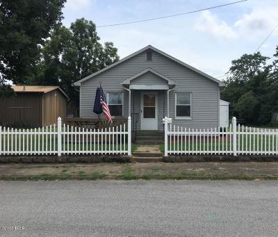 Murphysboro Single Family Home For Sale: 607 Chestnut Street