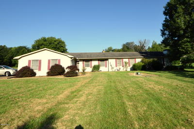 Marion Single Family Home For Sale: 3995 S Route 37