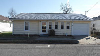 Massac County Single Family Home For Sale: 314 Ferry Street