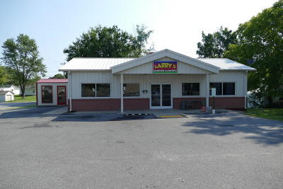 Massac County Commercial For Sale: 617 W 10th Street