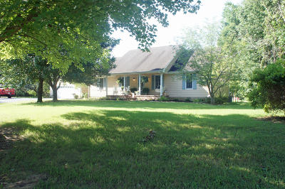 Massac County Single Family Home For Sale: 3500 Rocky Branch Road