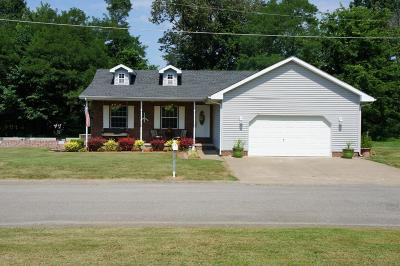 Massac County Single Family Home For Sale: 308 Dorris Drive