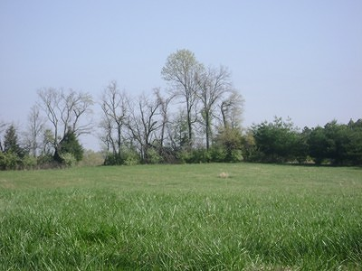 Carbondale Residential Lots & Land For Sale: Tbd10 Old Us Highway 51
