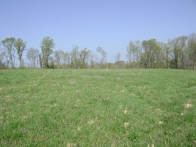 Carbondale Residential Lots & Land For Sale: Tbd2 Old Us Highway 51