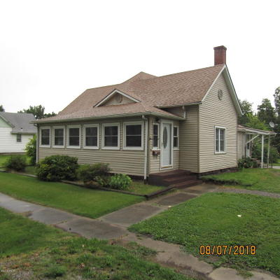 Herrin Single Family Home For Sale: 212 S 18th Street