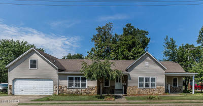 Johnston City Single Family Home For Sale: 804 Newton Street