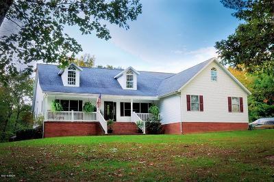 Marion IL Single Family Home For Sale: $310,000