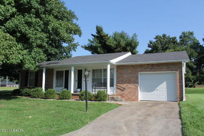 Carterville Single Family Home Active Contingent: 108 Lakeshore Drive