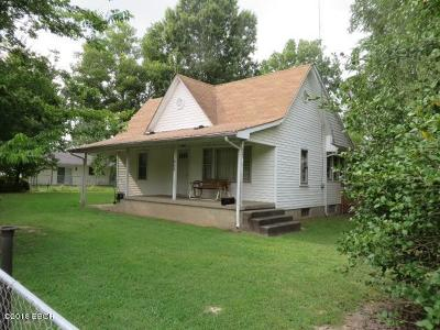 Carterville Single Family Home For Sale: 902 Farris Street