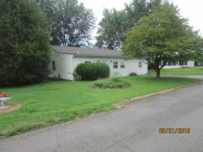 Massac County Single Family Home For Sale: 117 Lindsey Avenue