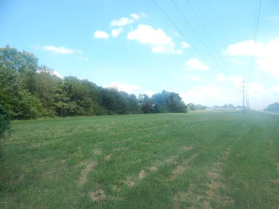 Residential Lots & Land For Sale: Lot 1 Lake Of Egypt Road