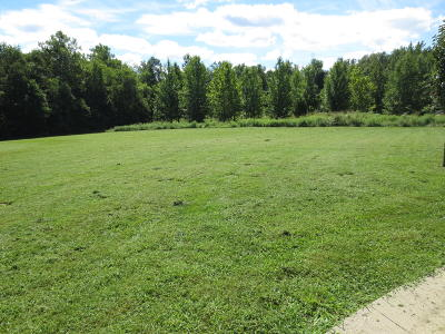 Residential Lots & Land For Sale: S Eugene Lane #Lot 10