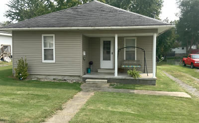 Johnston City Single Family Home For Sale: 1407 Monroe Avenue