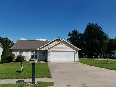 Carbondale Single Family Home For Sale: 1005 N Springer Street