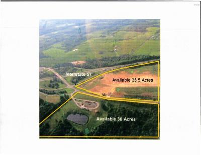 Goreville Residential Lots & Land For Sale: Goreville Rd