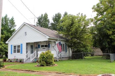 Marion Single Family Home For Sale: 309 W White Street