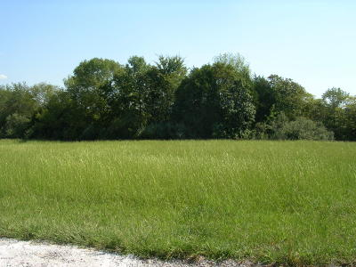 Vienna Residential Lots & Land For Sale: 004 Tulip Lane