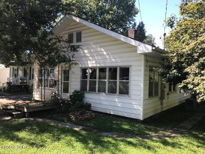 Murphysboro Single Family Home For Sale: 729 N 23rd