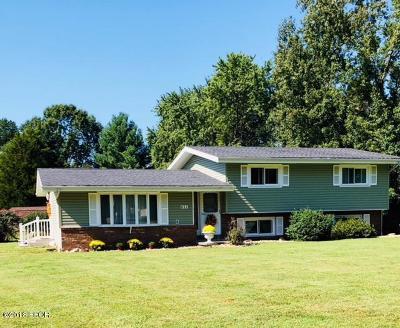 Herrin Single Family Home For Sale: 821 Melody Lane Lane