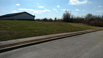 Carbondale Residential Lots & Land For Sale: Lots 5+6 S Giant City Rd.