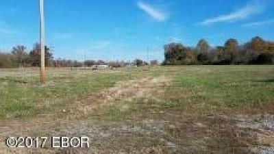 Carbondale Residential Lots & Land For Sale: Lot 2 E Main