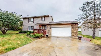 Carbondale Single Family Home For Sale: 206 Frances Lane