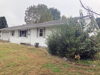 Metropolis IL Single Family Home For Sale: $84,900