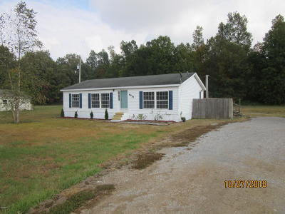 Massac County Single Family Home For Sale: 6930 S Us Hwy 45 Road