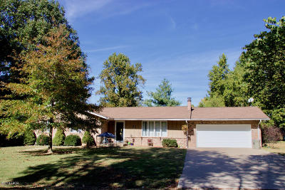 Murphysboro Single Family Home For Sale: 119 Shari Lane