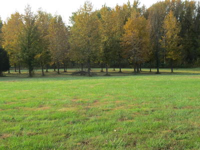 Residential Lots & Land For Sale: Eugene Lane #11