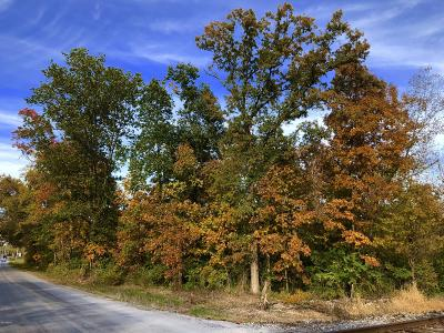 Benton Residential Lots & Land For Sale: Stuyvesant Street