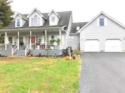 Goreville Single Family Home For Sale: 101 Sunset Lane