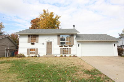 Carterville Single Family Home For Sale: 506 Timothy Lane