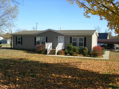 Stonefort IL Single Family Home For Sale: $69,500