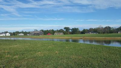Carterville Residential Lots & Land For Sale: Running Horse/Lakeview