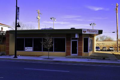 Carbondale Commercial For Sale: 709 & 713 S Illinois Avenue