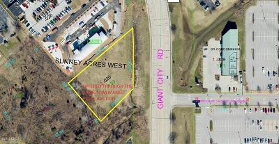 Carbondale IL Residential Lots & Land For Sale: $699,000