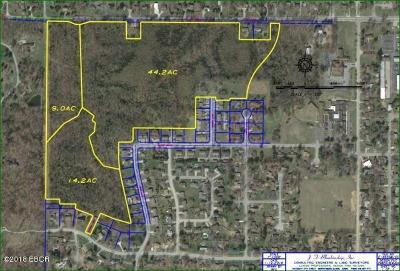 Carbondale IL Residential Lots & Land For Sale: $200,000