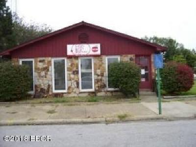 Shawneetown IL Commercial For Sale: $15,000