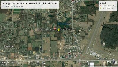 Carterville Residential Lots & Land For Sale: 6703 E Grand Avenue