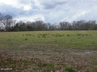 Carterville Residential Lots & Land For Sale: 6703a E Grand Avenue #2