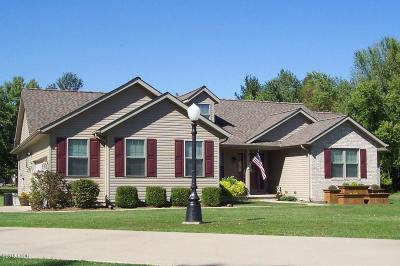 Carterville Single Family Home Active Contingent: 1607 Morning Dew Court