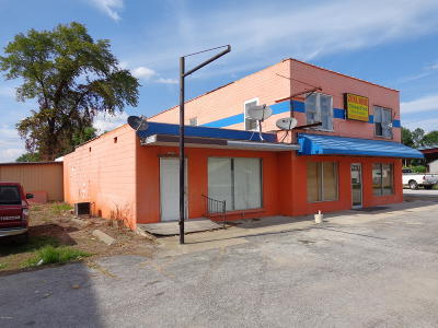 Commercial For Sale: 1216 Us-45