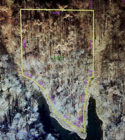 Massac County Residential Lots & Land For Sale: Driftwood Lane