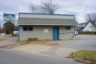 Massac County Commercial For Sale: 1011 W 10th Street